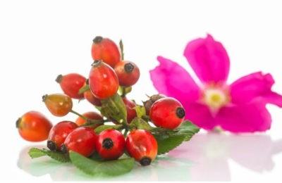 Cosmética natural con Rosa Mosqueta