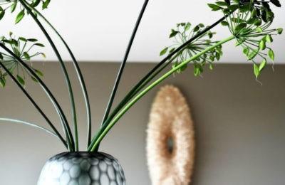 Descubre los beneficios de tener flores y plantas en el hogar