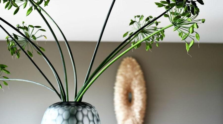 beneficios de tener flores y plantas en el hogar