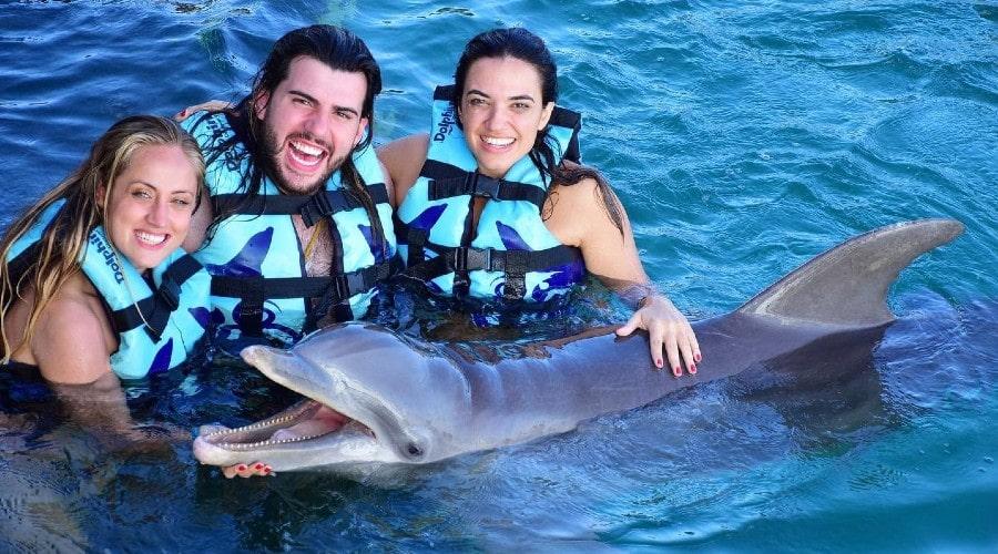 lugar para nadar con delfines en tus próximas vacaiones